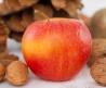 אגוזים למבחנים קשים לפיצוח - תפוחים ואגוזים לתקופת המבחנים
